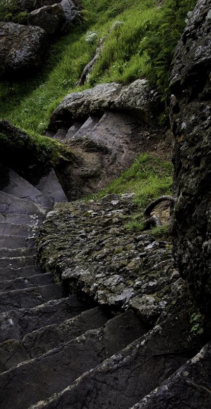 sutro_stairs_Randi-cropt